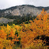 Αιτωλοακαρνανία: Φθινοπωρινή πανδαισία χρωμάτων (φώτο)