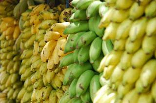 museum, pisang, museum pisang, museum pisang jerman, museum pisang amerika serikat