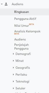 Google Analytic untuk membantu naiknya domain authority