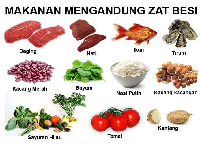 Makanan Yang Mengandung Zat Besi Info Sehat