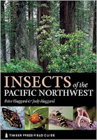 http://www.amazon.com/Insects-Pacific-Northwest-Timber-Guides/dp/0881926892/ref=sr_1_1?ie=UTF8&qid=1435121514&sr=8-1&keywords=insects+of+the+pacific+northwest