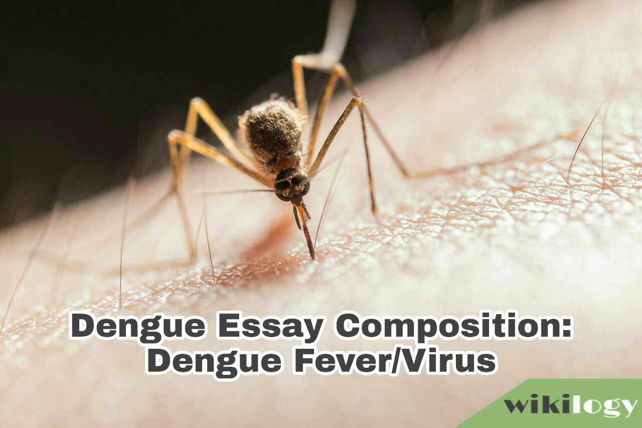 Dengue Essay Composition: Dengue Fever/Virus