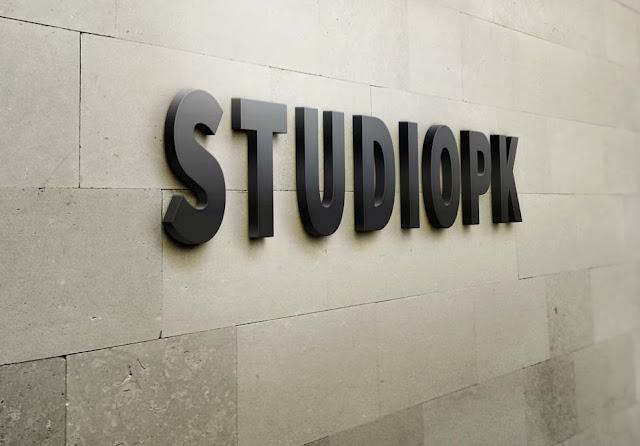 StudioPk 3D Wall Logo
