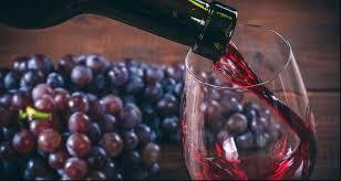 Emprendimiento - Elaboración del vino casero