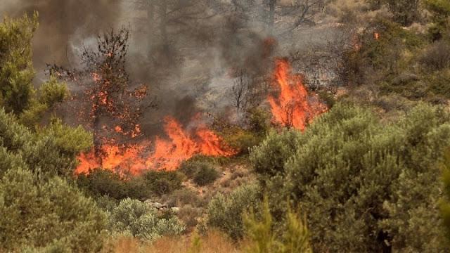 Ακραίος κίνδυνος πυρκαγιάς την Κυριακή - Μεγάλη προσοχή και στην Αργολίδα