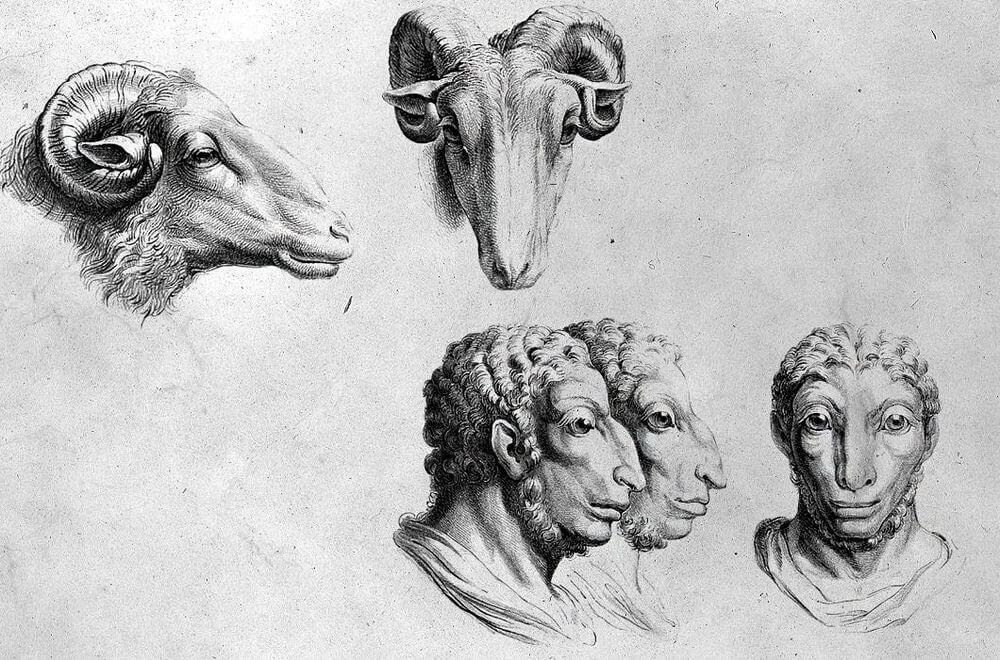 16-Ram-Animal-Transformations-Drawings-from-the-1600s-www-designstack-co