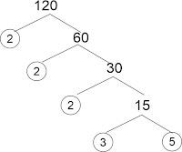 contoh pohon faktor