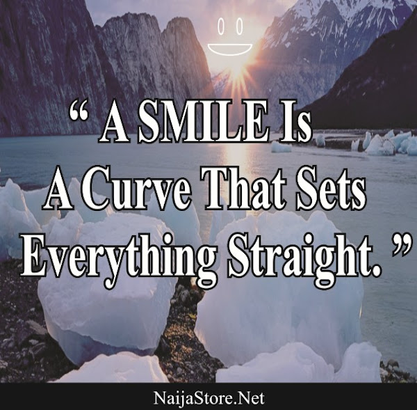 Quotes: A SMILE Is A Curve That Sets Everything Straight