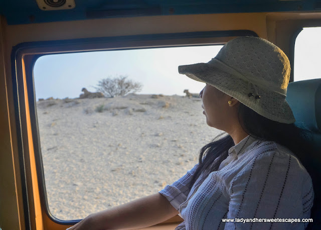 Lady in sir bani yas island
