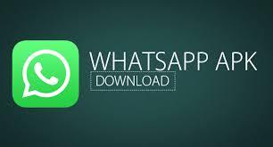 Aplikasi Whatsapp Apk Terbaru