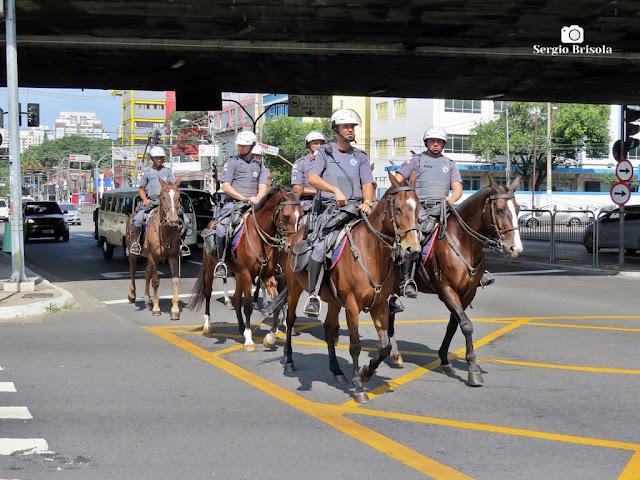 Close-up de grupo de Policiais da Cavalaria da Polícia Militar de São Paulo em patrulha por Sampa