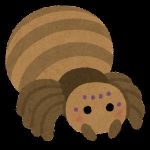 クモのキャラクター(茶色)