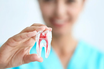 5 Things To Look For When Purchasing Dental Insurance