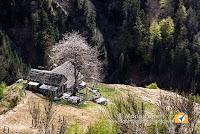 Alpe Caulin Valle Vigezzo