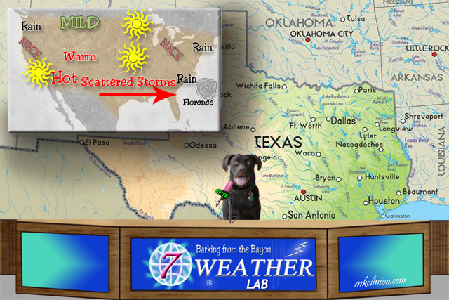 Dog giving weather report