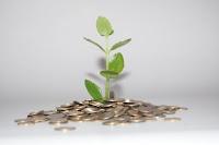 Oferty lokat i kont oszczędnościowych
