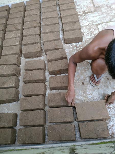 Registration Form : Online Training on how to make Bio-Bricks