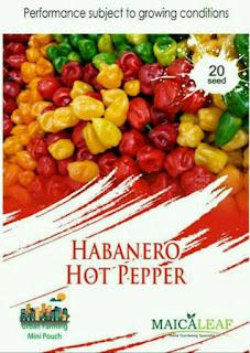 benih-cabai-habanero-hot.jpg
