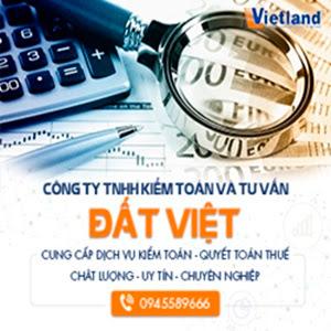 Công ty TNHH Kiểm toán và Tư vấn Đất Việt