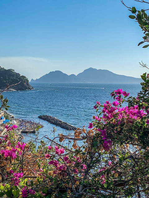 carbon road bike rental in massa lubrense sorrento coast cycling southern Italy