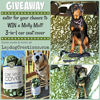 giveaway molly mutt car seat cover dogs pets travel