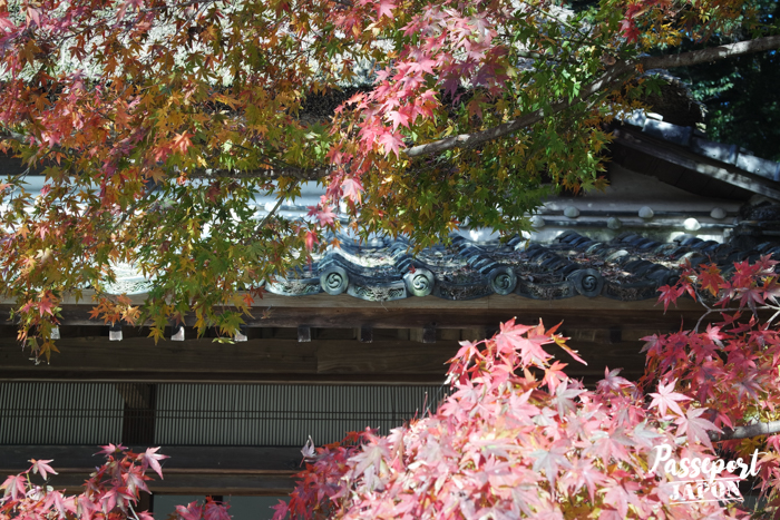 toit de la maison de Genboku Ito sous les momiji, Kanzaki, Saga