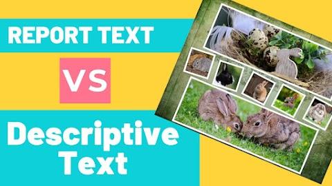 Report Text VS Descriptive Text