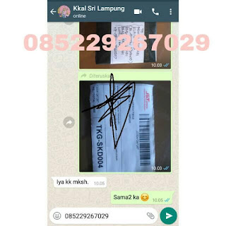 hub 085229267029 Jual Produk Tiens Asli Bersegel Resmi Original Di Banggai Kepulauan Agen Distributor Cabang Stokis Toko Resmi Tiens Syariah Indonesia. ASLI DIJAMIN ORIGINAL