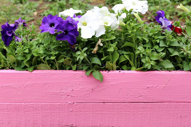 Pallet Planter Box  |  Penny Pincher Jenny on fg2b