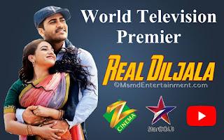 Real Diljala Hindi Dubbed Movie 2020 | Sharwanand and Nitya Menon | Msmd Entertainment