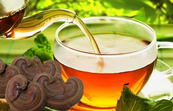 uống trà nấm linh chi