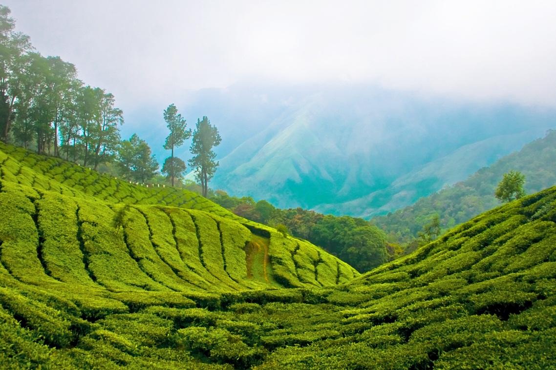 Beautiful Travel Destinations In India