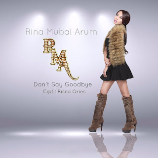 Rina Mubal Arum - Don't Say Goodbye