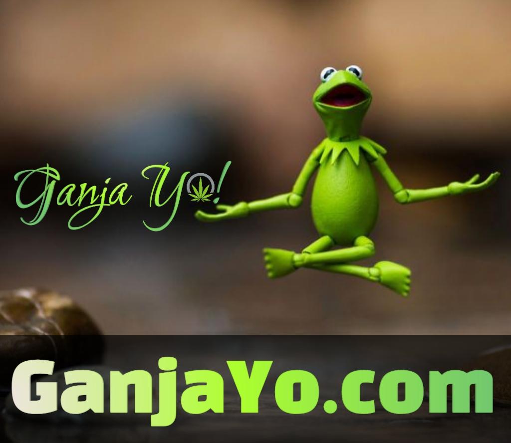 GanjaYo.com