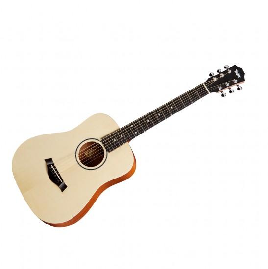 dan Guitar Taylor Baby