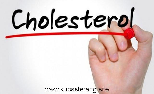Memahami Gejala  Kolesterol  Secara Detil  Lengkap dengan Penanggulangannya