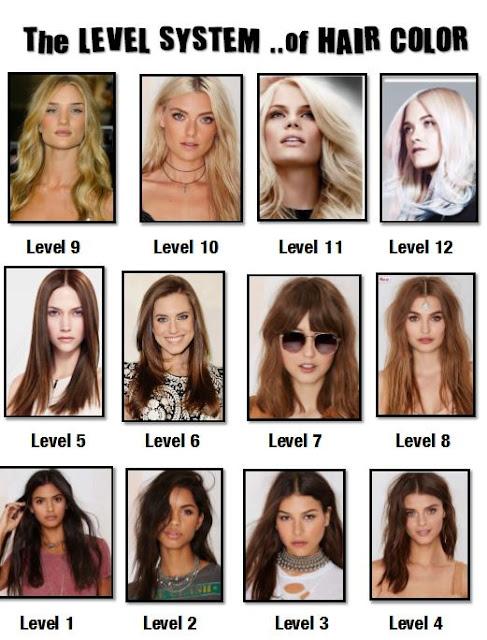 My Affair With Cosmetics Amp Hair TipsampTricksHair Color ...