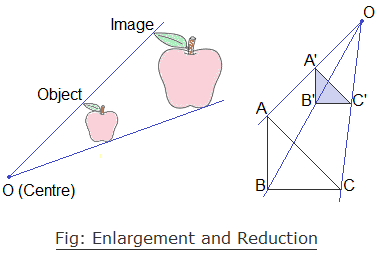 Fig: Enlargement and Reduction