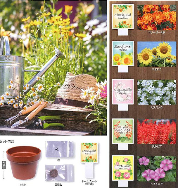 http://www.shopncsx.com/homegardeningflower.aspx