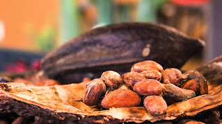 Kasa pähkinöitä puunkaarnasta valmistetun astian päällä.