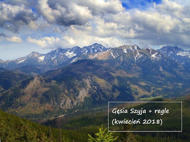 Majówka w Tatrach: Rusinowa Polana-Dolina Pańszczycy-regle