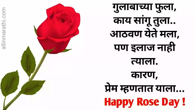 रोज डे शुभेच्छा मराठी | Rose day wishes-sms-status marathi .