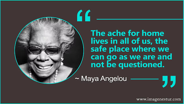 Maya Angelou Quotes About phenomenal