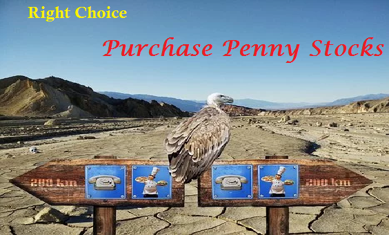 How to Purchase Penny Stocks