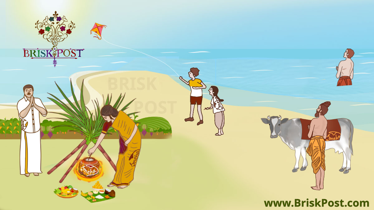 About Sankranti festival and all 12 Sankranthi days events such as rice cooking by Indian lady below sugarcanes, kites flying by the boy and gird, Indian saint monk baba performing Surya Namaskar after nadi snan or river bathing, and a brahmin with a cow; Cartoon illustration by Sneha