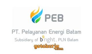 Lowongan Kerja PT Pelayanan Energi Batam( PEB)