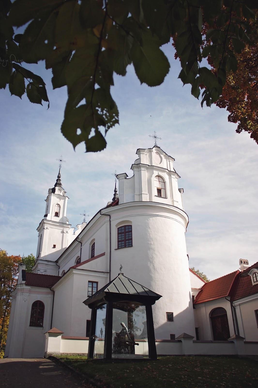 Vestuvių fotografas Panevėžyje