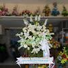 Standing Flower Ucapan Dukacita Diah Elpramita Laksamana
