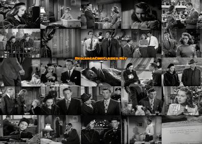 Fotogramas: Negocio en vacaciones (1949) Holiday Affair