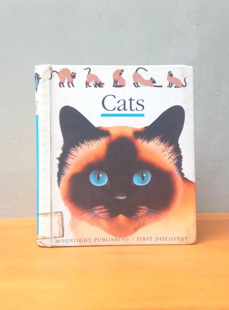 CATS, Henri Galeron